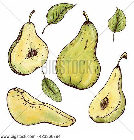 Cute Juicy Pears, Cut Pears, Slice, Half, Green Leaves, Healthy Food, Vegan, Bright Green Pears Illu