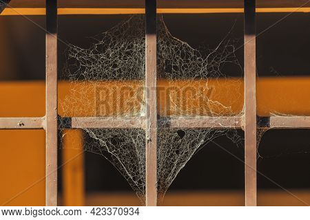 Photograph Of A Large Spider Web In The Sunshine On A Steel Gate With Orange Background