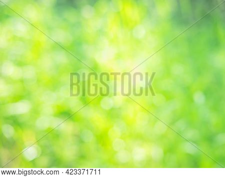 The Abstract Spring Or Summer Background Of The Grass In The Sunbeams. Poor Focus For The Aquarelle