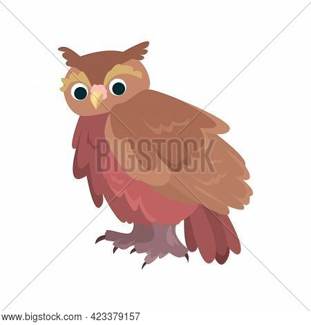 Owl Flat Icon. Colored Vector Element From Birds Collection. Creative Owl Icon For Web Design, Templ