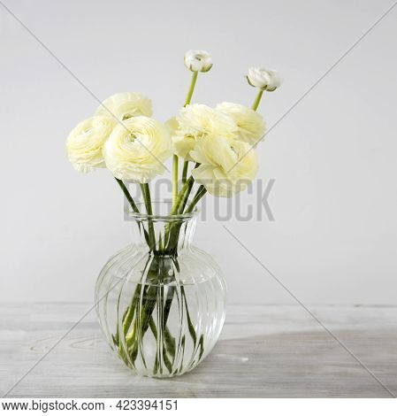 The Bouquet Of Pale Yellow Persian Buttercups In The Glass Vase On The Table Against The Grey Wall