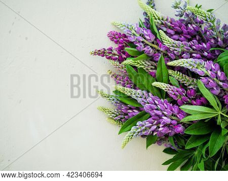 Summer Composition Of Wild Flowers Lupinus, Lupin, Lupine Purple, Blue, Pink Color On Grey Concrete