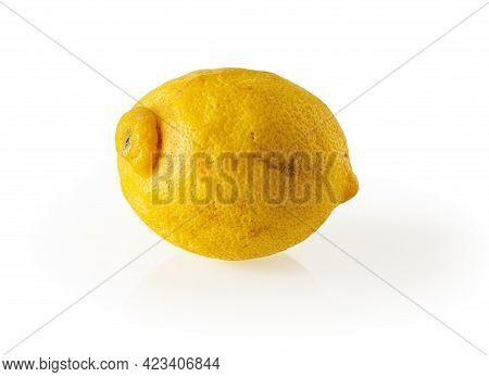 Ugly Organic Bio Lemon Isolated On White Background. Misshapen Citrus Close-up. Trendy Ugly Fruits A