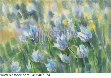 White Windflowers In The Meadow Watercolor Background