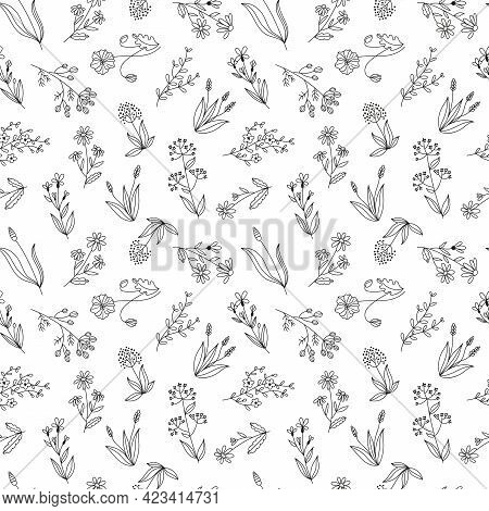 Seamless Vector Floral Pattern, Wildflowers Hand Drawn Graphic Botanical Illustration, Doodle Sketch