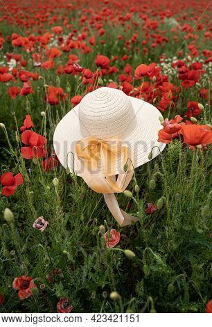 Vertical Closeup Perspective View Of Woman Wicker Hat With Light Colored Scarf In Field With Red Pop