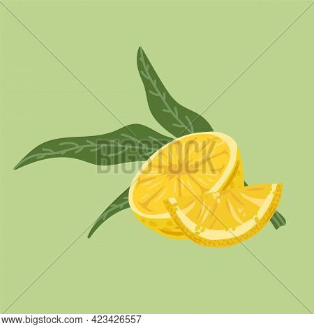 Illustrations Of Citrus Fruits With Leaves. Vector Juicy Lemon For The Summer Restaurant Menu. Vecto