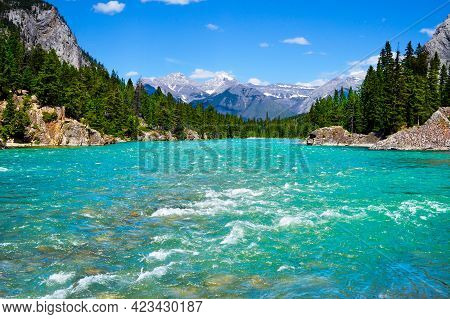 Rapidly Flowing Waters Of Bow River In Banff National Park With Surrounding Pine Trees And The Snow-