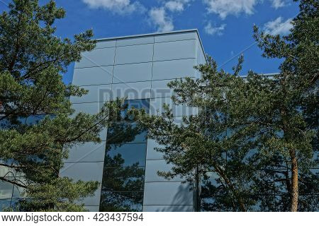 Gray Metal Attic Of A Large Building With A Long Window Against The Sky Behind Green Pine Trees