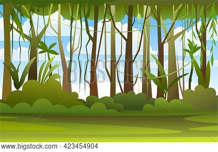 Jungle Illustration. Sky. Dense Wild-growing Tropical Plants With Tall, Branched Trunks. Rainforest