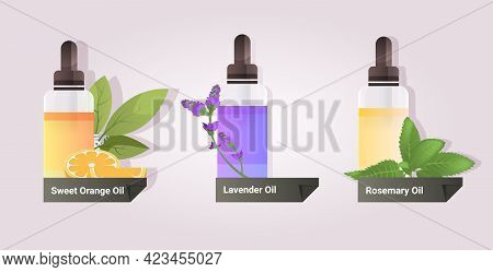 Set Dropping Essential Sweet Orange Lavender Rosemary Oil Glass Bottles With Liquids Natural Face Bo