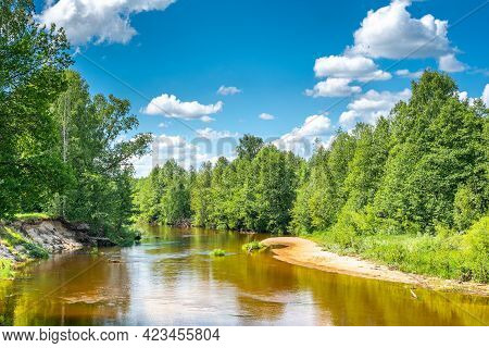 Nature Landscape Photography Forest River Clean Scenery Environment Space Of Summer Clear Weather Da