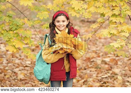 Enjoying Autumn Day. Child Walk In Autumn Forest Or Park. Fall Seasonal Weather. Childhood Happiness