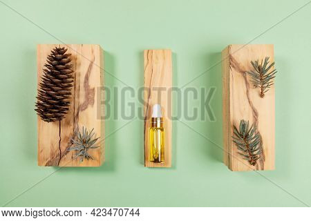 Aromatherapy And Spa Layout Of Essential Spruce Oil In Glass Bottle, Twigs And Cone On Boxwood Stand