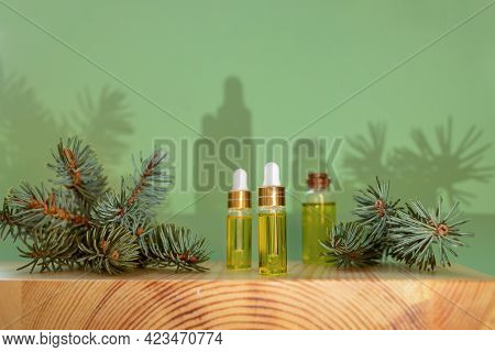 Aromatherapy And Spa Composition With Essential Spruce Oil And Branches And With Trendy Shadows.