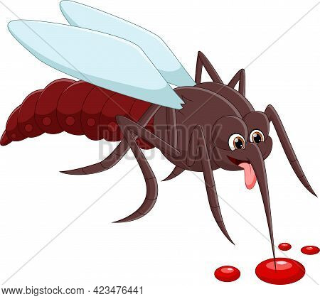 Cartoon Mosquito Drinking Blood On White Background