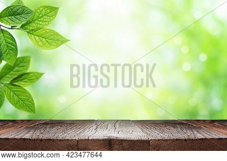 Empty Wooden Table Top And Green Leaves Of Plant Over Blurred Nature Background. Summer Background W