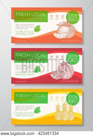 Fresh Fruits Label Templates Set. Abstract Vector Packaging Horizontal Design Layouts Collection. Mo