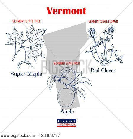 Vermont. Set Of Usa Official State Symbols. Vector Hand Drawn Illustration
