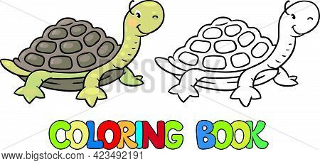 Coloring Page Outline Of Turtle With Colored Example. Vector Illustration, Coloring Book For Kids Pr