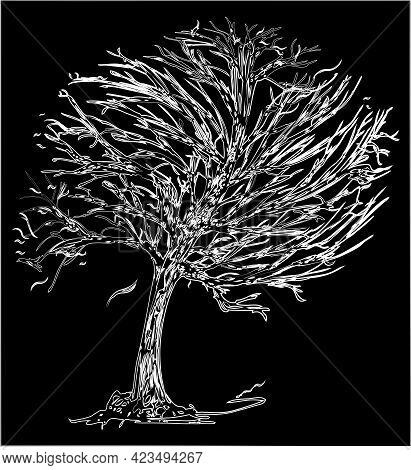 Outline Drawing Of Frozen Tree In Windy Weather