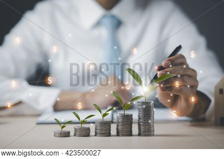 Coins Stack And Leaf With Line Graph Business Connect On White Background, Saving Ideas And Investme