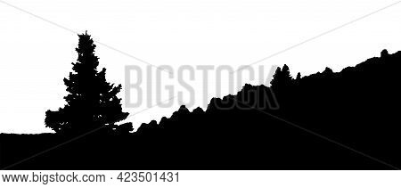 A Fir-tree Grows In The Meadow. A Dense Forest Is Visible In The Distance. Silhouettes Isolated On W