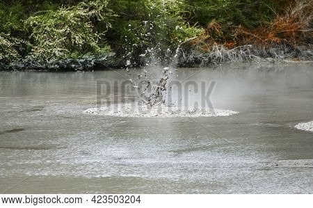 Geothermal Area Named Waiotapu In New Zealand