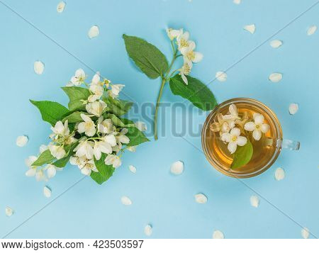 Top View Of Jasmine Flowers And Jasmine Tea On A Blue Background. An Invigorating Drink That Is Good