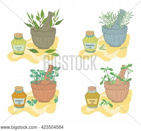 Set With Laurel, Rosemary, Oregano And Thyme Oils