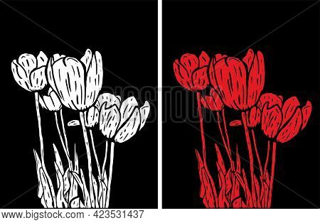 Vector Illustration Of White And Red Tulips On A Black Background. Modern Floral Wall Art.