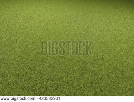 A Green Lawn With Text Free Space As A Sports Field Background, 3d Rendering