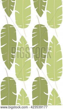 Simple Pattern With Green Silhouettes Of Banana Leaves On White Background. Tropical Texture. Wallpa