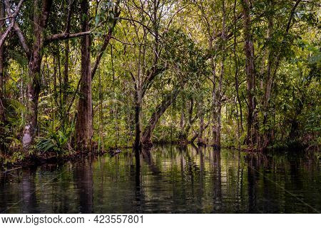 Beautiful Landscape Scenic Of Green Canal Called