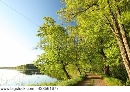 Spring landscape trees lake water Nature landscape Nature background Nature landscape Nature landscape Nature background landscape sunrise Nature landscape Nature background Nature landscape Nature background landscape Nature landscape Nature background.