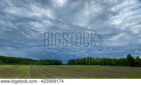 Country Landscape With Green Meadow And Blue Sky Above. Simple Countryside