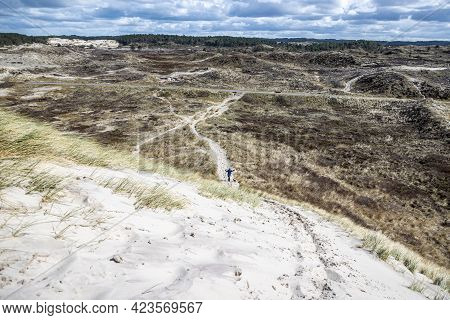 Hiking Trails In A Dune Nature Reserve, A Woman And Her Dog Among White Sand, Grass, Dry Heather And