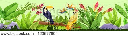 Summer Jungle Seamless Border, Vector Tropical Nature Background, Toucan, Parrot, Exotic Plants, Flo