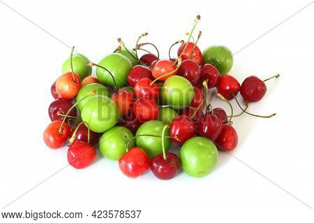 Single Whole Fresh Green Can Erik Plum And Cherry Close Up Isolated On White Background. Green Plums