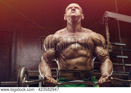Old fashion athlete bodybuilder doing arm exercises in gym. Brutal bald caucasian sports man style o