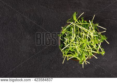 Bowl With Peas Microgreens On Black Background Top View. Sprouted Seeds. Healthy Eating Sprouts.