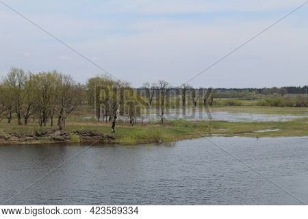 Spilling The River In Spring On The Plain. The River Came Out Of The Banks. Natural Phenomenon