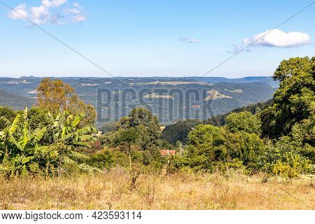 Forest And Farm Plantation Views Over Mountains