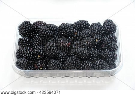Fresh Raw Organic Blackberries Pile In Plastic Container Isolated On White Background