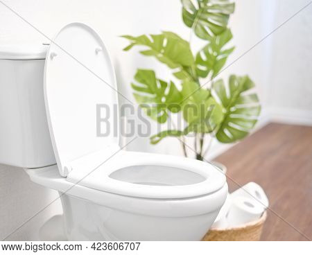 Modern Toilet, Great Design For Any Purposes. Ceramic Toilet Bowl With Toilet Paper Near Light Wall