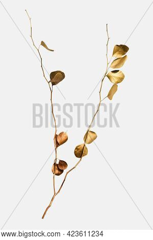 Eucalyptus round leaves painted in gold on an off white background