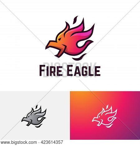 Fire Flame Comet Meteor Burn Eagle Hawk Falcon Logo