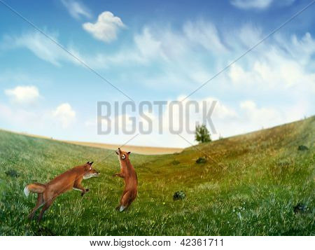 Füchse spielen in einem Feld digitale Gemälde