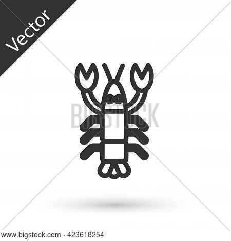 Grey Line Lobster Icon Isolated On White Background. Vector.