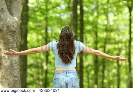 Back View Of A Happy Woman Outstretching Arms In A Forest